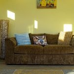 Pomona Painting Services Living Room Project